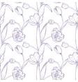 tulip bouquet hand drawn vector image vector image