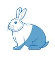Wild rabbit nature rodent farm image vector image