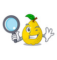 detective bunch cartoon of juicy yellow quinces vector image vector image