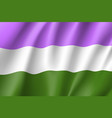 genderqueer pride flag movement lgbt vector image vector image
