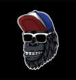 gorilla head eyeglasses vector image vector image