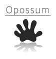 Opossum animal track vector image vector image