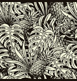 summer tropical vintage seamless pattern vector image vector image