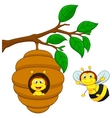 Cartoon a honey bee and comb vector image vector image