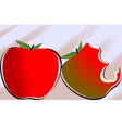 food background vector image