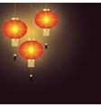 Chinese lantern vector image