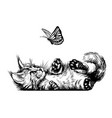 a kitten is playing with a butterfly vector image vector image