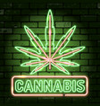 cannabis neon frames signboards vector image