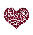 heart shape burgundy vector image vector image