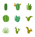 prickly cactus icons set cartoon style vector image