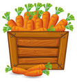 carrot on wooden banner vector image