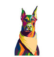 doberman dog colorful pop art vector image