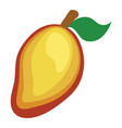flat design icon of mango in ui colors vector image