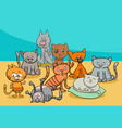 funny cats group cartoon vector image vector image