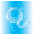 Group bubbles on a blue background vector image