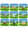 set of dog breed in nature vector image
