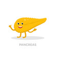 strong healthy pancreas cartoon character isolated vector image vector image