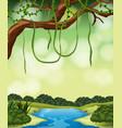 a nature jungle landscape vector image vector image