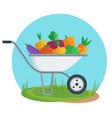 apple picking garden wheelbarrow with apple flat vector image vector image