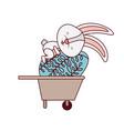 bunny with wheelbarrow and easter eggs icon vector image
