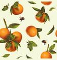 Orange mandarin pattern vector image vector image