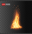 realistic fire with sparks isolated campfire vector image vector image