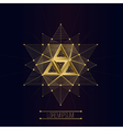 sacred geometry forms vector image