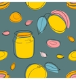 Seamless pattern Apricot jam and fruits on gray vector image