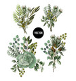 set of greenery leaves and succulent vector image vector image