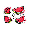 set watermelon fruits on white background vector image vector image