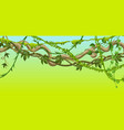 twisted wild lianas branches banner vector image vector image
