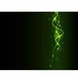 Abstract green background with line and light vector image
