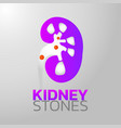 kidney stones icon design infographic health vector image vector image