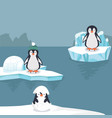 penguins in arctic background vector image vector image