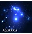 Symbol Aquarius Zodiac Sign vector image