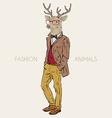 Anthropomorphic design of deer hipster vector image