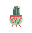 blooming cactus house plant growing in cute vector image vector image