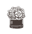 bouquet of flowers in a box vector image vector image