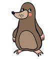 cute fat mole on white background vector image vector image