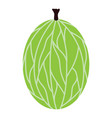 flat design icon of gooseberry in ui colors vector image vector image