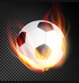 football ball realistic football soccer vector image