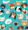 heads dogs and cats pets pattern vector image