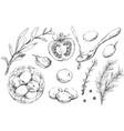 mediterranean set vegetables and spices design vector image