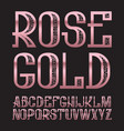 rose gold typeface golden pink patterned font vector image vector image