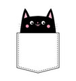 black cat in the pocket pink cheeks cute cartoon vector image vector image