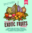 exotic fruits sketch poster for farm market vector image vector image