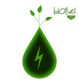 green biofuel concept image vector image