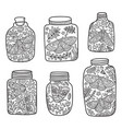hand drawn floral jar with moth and butterfly ink vector image