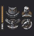 owl logo set- emblem design vector image vector image