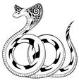 Snake Cobra vector image